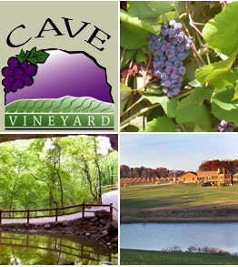 Cave Vineyard & Distillery