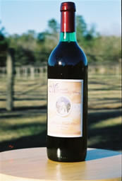 Muscadine Red Wine